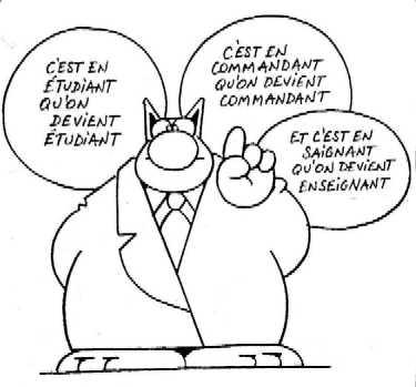 Un blog SES ! dans La Société en question(s) chat-enseignant
